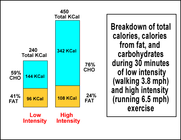 Energy Utilization Workout Intensity